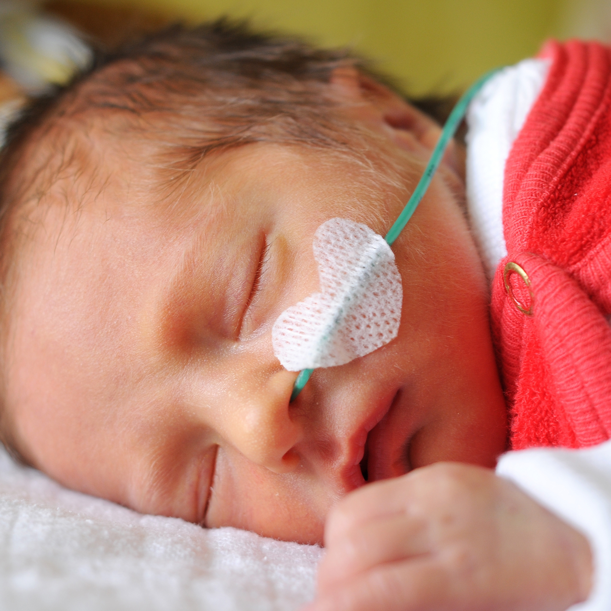 how to bond with your baby in the NICU