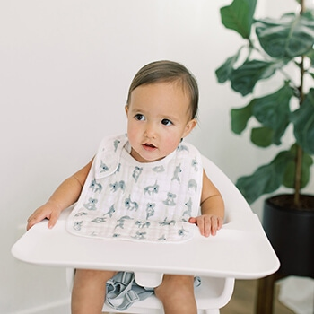 baby with Swaddle